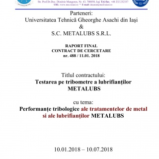 Raport Final Metalubs